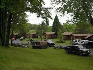 edgewater yard - Edgewater Resort Country Log Cabins - Iron Mountain - rentals