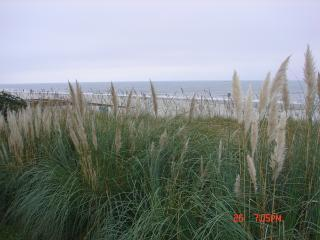 View from Gazebo - An Ocean Front Beach House - Myrtle Beach - rentals