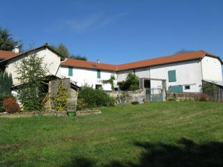 Les Glycines, 19th Century Restored Farm House - Tarbes vacation rentals