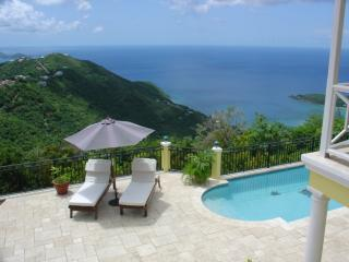 High-End Luxury Ocean/Island View Pool Games Room - Road Town vacation rentals