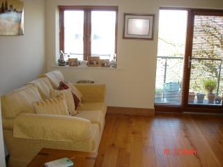 Picture 132 - LUXURY DUBLIN APARTMENT SLEEPS UP TO 4 PEOPLE - Dublin - rentals