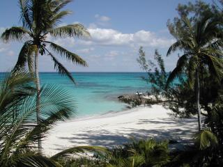 Beach from deck - Tropical Impulse - North Palmetto Point - rentals