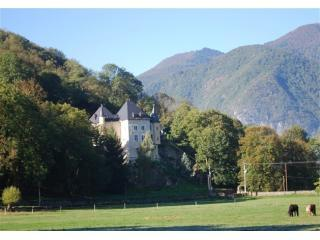 View of the house from fields near the lake - Beautiful chateau in foothills of the Pyrenees - Saint-Beat - rentals