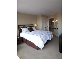Bedroom - Great Condos in the heart of the Mag Mile! - Chicago - rentals