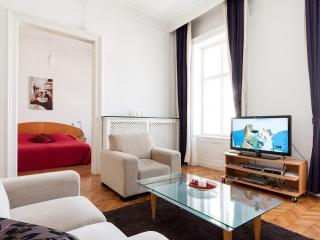 Budapest Classic Luxury Apartment with A/c in Downtown Business 5th. District - Budapest vacation rentals