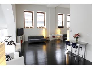 3052nd 02 - 3,000 Sqft Loft - New York City - rentals