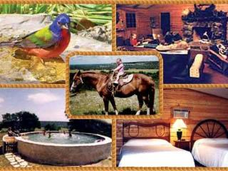 TEXAS.......At It's Best - Fredericksburg vacation rentals