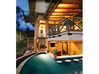 Pool - Bar - Terraces - Views - 5 Suites / 12 Guests - New- Oceanviews-Total A/C ! - Manuel Antonio - rentals