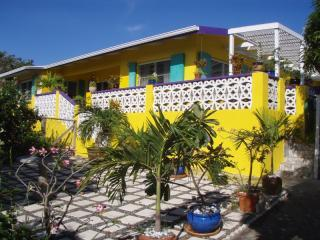 Front Entry and Patio Garden - Charming Comfy Sustainable Eco-Villa - 100% Solar! - Christiansted - rentals