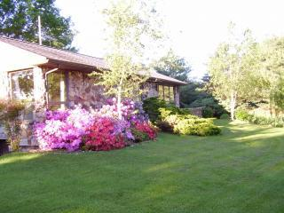 Front of stone home in the spring - Lovely Shenandoah Valley Rock Home on Four Acres - Mount Jackson - rentals