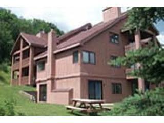 The Reese home at A101 Snowpine Village - Ellicottville vacation rentals