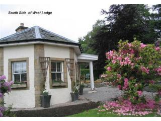 The Highlands of Scotland your base West Lodge - Contin vacation rentals