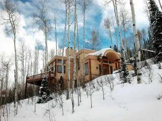 up mountain view - Snowmass Dream House in Snowmass/Aspen - Snowmass Village - rentals