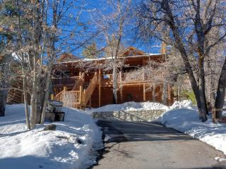Modern 3 bedroom cabin. Walk to Bear Mountain. - Moonridge vacation rentals