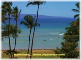 Beach - !!!REVIEWS SPEAK FOR THEMSELVES,. SPECIAL DUE TO CANCEL. 9/14-9/23  $89/nt, - Kihei - rentals