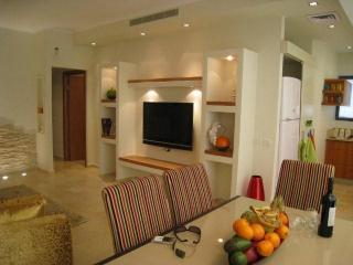 Gorgeous apartment in the talbieh, jerusalem - Jerusalem vacation rentals
