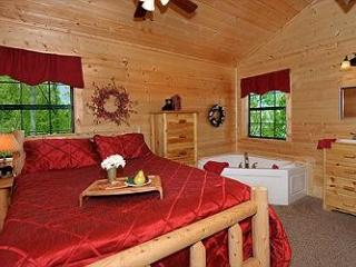 Absolutely Bearable - Sevierville vacation rentals