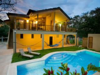 Our pool and backyard at night - EcoVida Suite Luxury Accommodation in Playa Grande - Playa Grande - rentals