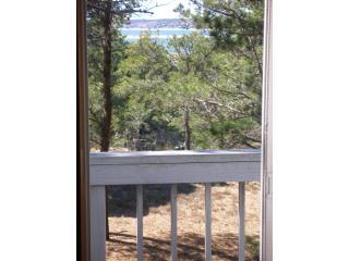 View - **Walk to Beach**Water View*** Indian Neck - Wellfleet - rentals