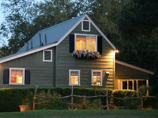Beautiful 2/2 Cottage with Private Hot Tub! - Fredericksburg vacation rentals