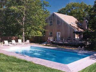 Sunny and private swimming pool area with decking, a BBQ grill, and chaise lounges. - The Northwester - near East Hampton Village - East Hampton - rentals