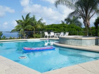 Affordable - Private Pool, Spa- Amazing Ocean View - Kailua-Kona vacation rentals