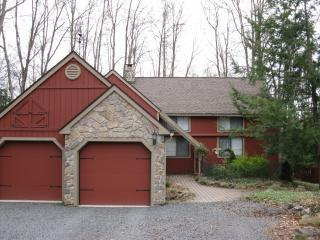 Beautiful home, hot tub, dry sauna, pool table - Pocono Pines vacation rentals