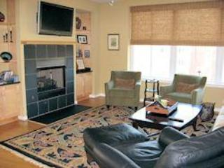 ACACS Fireplace-Lg - ACAC 3 bedroom condominium - downtown area - Charlottesville - rentals
