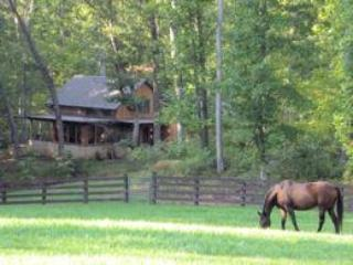 RuthiesRoost Ext1-Lg - Ruthie's Roost 2 bedroom/2 bath cottage - Charlottesville - rentals
