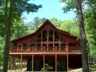 Lake Escape Cabin - Blairsville vacation rentals