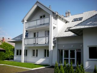 ACE Apartments Bled - Bled vacation rentals