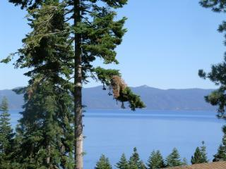 Westshore Tahoe Park Luxury,Lake Views,HotTub,Wifi - Tahoe City vacation rentals