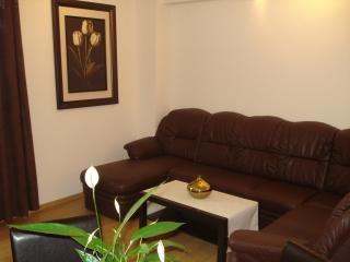 Living room - Beautiful,new two room apartment in Brussels - Brussels - rentals