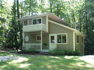 Welcome Home - Cottage In The Woods-SPRING SPECIAL - South Haven - rentals
