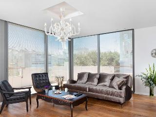 Be Our Special Guest at the Jean Jaures Penthouse - Tel Aviv vacation rentals