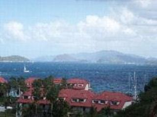 View of Sapphire - Peaceful with a Gorgeous View at Sapphire Beach - East End - rentals