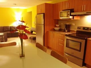 Gorgeous modern Condo near Santa Ana, San Jose, CR - San Jose vacation rentals
