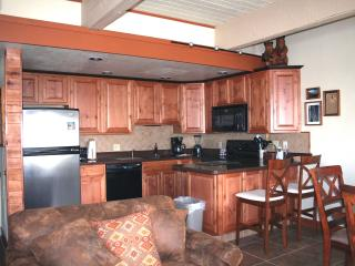 SKI-IN/OUT  Club B Slopeside Condo  w/Spa Facility - Steamboat Springs vacation rentals