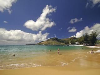 Fantastic Value! Walk to Kalapaki Bay--Mango Hale - Hanalei vacation rentals