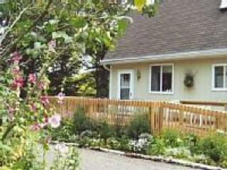 Brook Song, a charming, woodland home on 43 acres - Glen Arbor vacation rentals