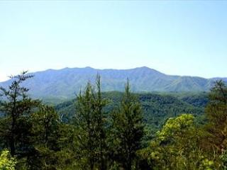Eagles View - Sevierville vacation rentals