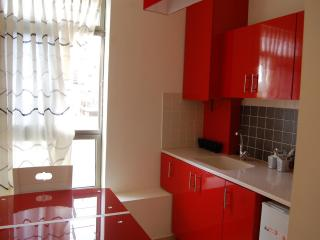 Nice apartment close to the beach in the center - Netanya vacation rentals