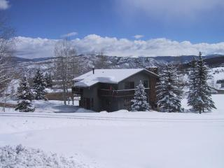 Snoke Chalet - Snowmass Village vacation rentals