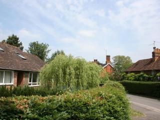 Weeping Willow House, Henley on Thames with canoes - Henley-on-Thames vacation rentals