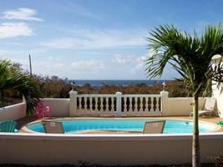 Lovely Pool With Great Sea View - St. Croix Luxury Vacation Home- great seaview - Christiansted - rentals