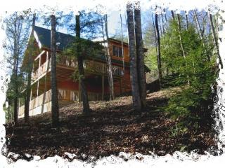 BOOK FALL -WINTER NOW. SPECIALS FOR OFF SEASON - Wears Valley vacation rentals