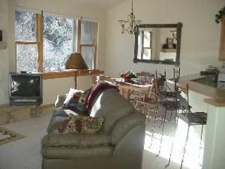 Afforable, nicely furnished 2 bedroom in Avon - Beaver Creek vacation rentals