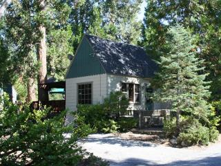 Charming Vintage Arrowhead Cabin Close to Lake - Lake Arrowhead vacation rentals