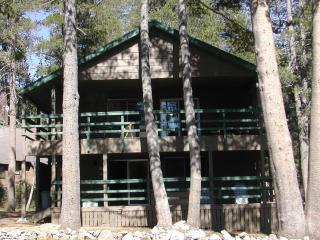 Spacious Serene Lakes cabin, near Lake Tahoe - Soda Springs vacation rentals
