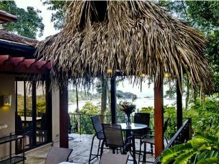 Stunning Beach Ocean View Villa with Pool! WiFi! - Dominical vacation rentals